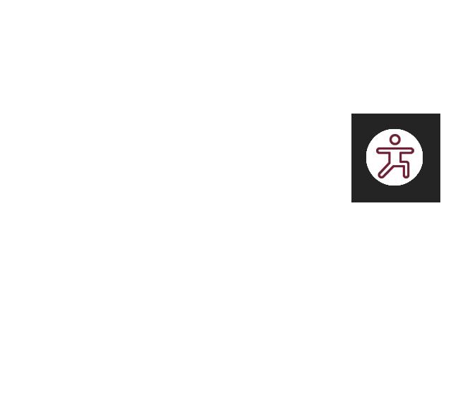 gyro-icon